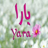 معنى اسم يارا Yara