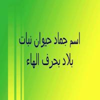 حيوان بحرف الهاء نبات بحرف الها بلاد بحرف ه
